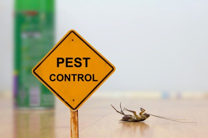 Pest Contol in West Watford, Holywell, WD18. Call Now 020 8166 9746
